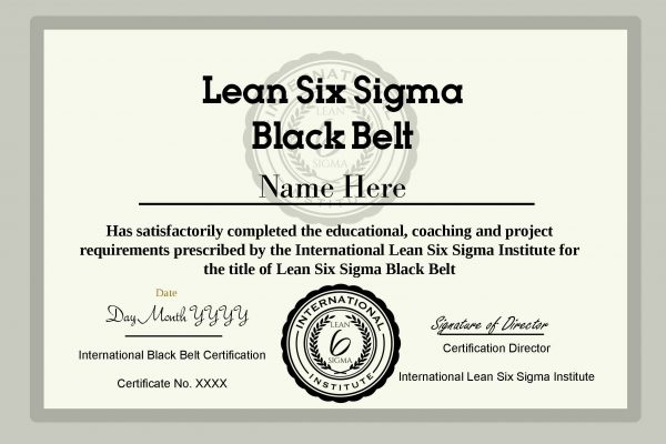 International Accredited Lean Six Sigma Institute Certified Black Belt