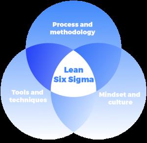 Executive management Lean Six Sigma Training